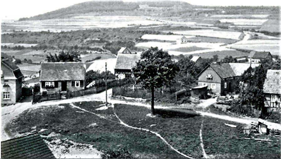Mauerreste und Scherben aus dem 13. Jahrhundert in Hallenberg gefunden - region, region-wi-me-ha, hallenberg