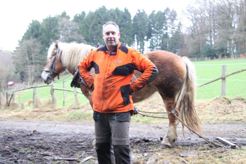 Ein PS auf vier Beinen - Holzrückepferd Heidi überzeugt mit Wendigkeit und Kraft - drolshagen