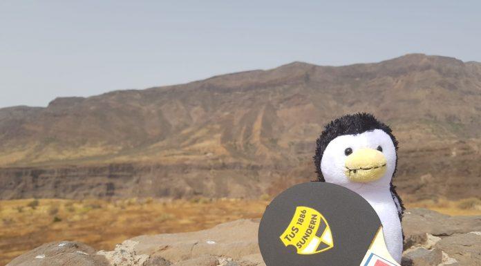 Die große Reise des kleinen Pingponguin