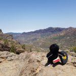 Die große Reise des kleinen Pingponguin - sundern, region-arnsberg-sundern, arnsberg