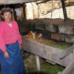 Dräulzer Platt in Ecuador - region, drolshagen