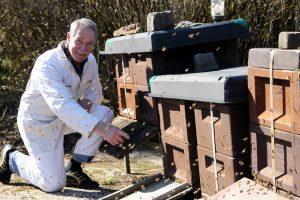 Der Herr der Bienen: Wendelin Albus ist Imker in vierter Generation - region
