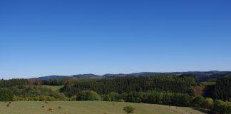 """Landschaftsplan """"Rothaarvorhöhen"""" wird öffentlich ausgelegt"""